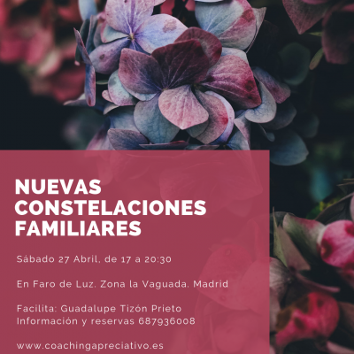 Taller de Constelaciones en Madrid