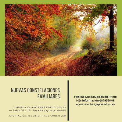 Nuevas Constelaciones Familiares. 24 Noviembre en Madrid