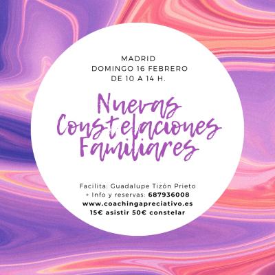 Taller Nuevas Constelaciones domingo 16 febrero en Madrid
