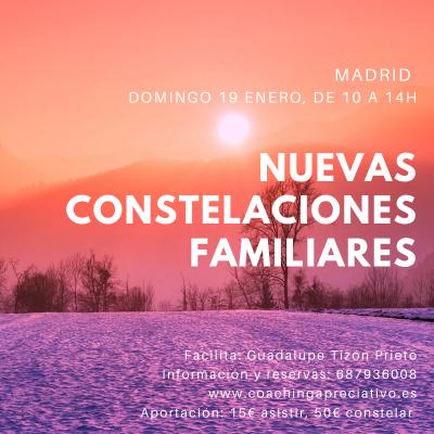 Taller Nuevas Constelaciones Familiares Madrid 19 de Enero