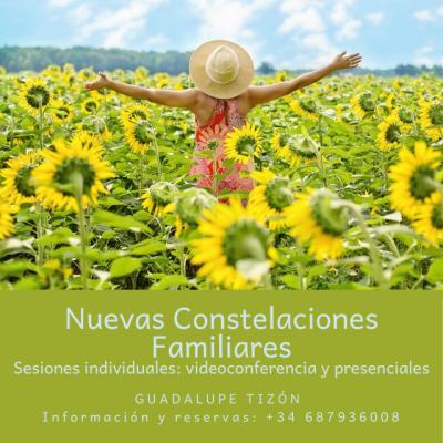 Sesiones Individuales de Constelaciones Familiares